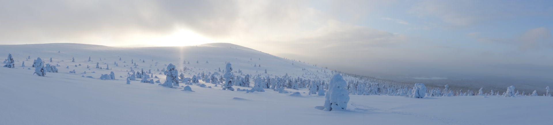 Ylläs Holidays lumikenkäily
